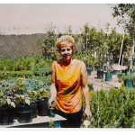 Our founder & grandmother, Dorothy Warner, in our very first garden center in Page, Arizona.