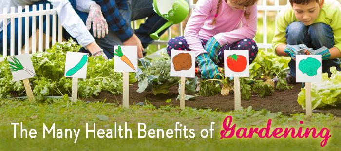 Gardening-for-Health-Landing-Page-Block