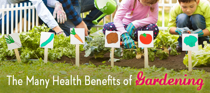 Gardening-for-Health-Landing-Page-Block