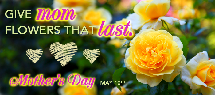 Mother's-Day-Landing-Page-Block