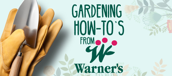 Gardening-How-To-Landing-Page-Banner