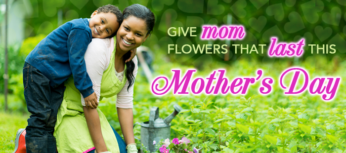 Mother's-Day-Landing-Page-Banner