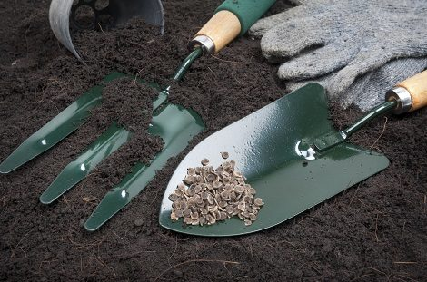 gardening tools on black soil