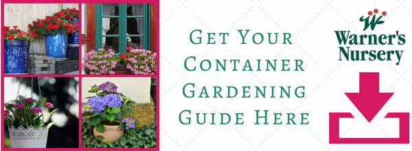 container-gardening-landing-page
