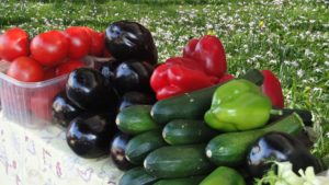 Pile of peppers, cucumbers, eggplants and peppers